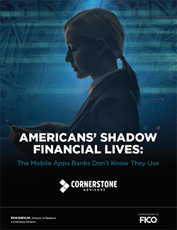 FICO_Americans-Shadow-Financial-Lives_COVER_250